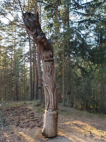 Collina delle Streghe Juodkranté Lituania 33