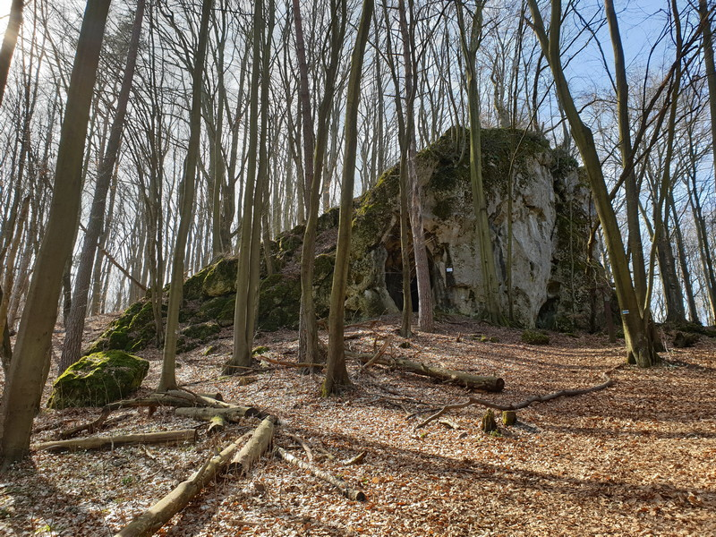 Castello di Ostreznik Polonia 1