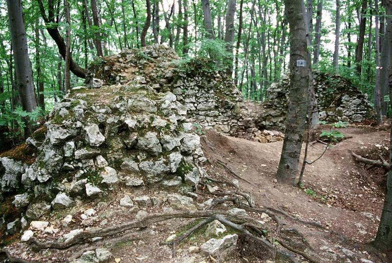 Castello di Ostreznik Polonia 2