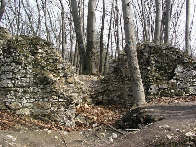 Castello di Ostreznik Polonia 3