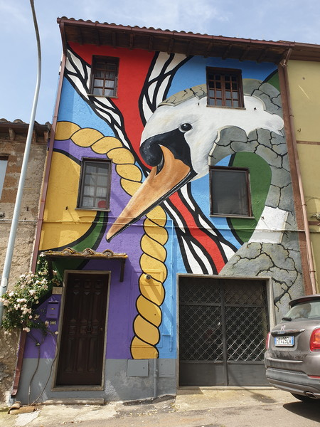 Il brutto anatroccolo a Sant'Angelo di Roccalvecce